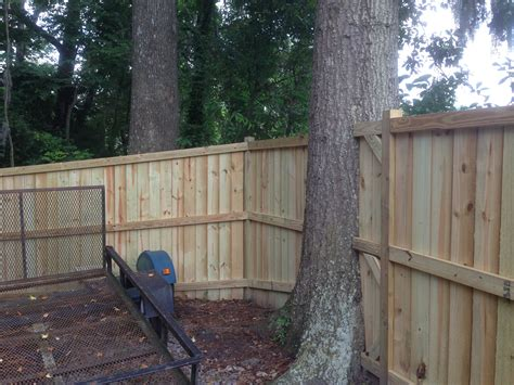 building a fence around trees search backyard