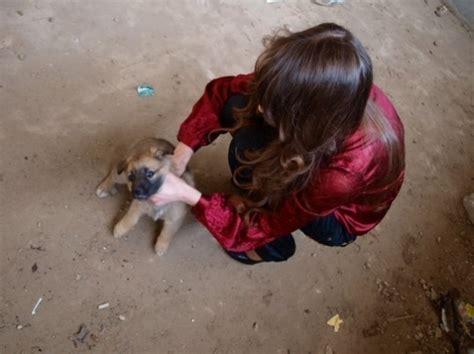 kidz index kissing galeri foto gambar wallpaper girls kill crush animals download foto gambar