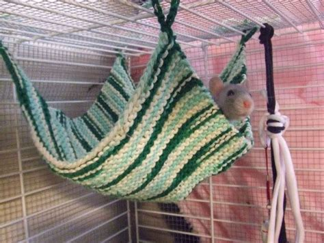 how to knit a hammock 25 best ideas about rat toys on gerbil toys