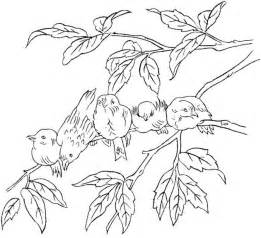 birds at home colouring pages