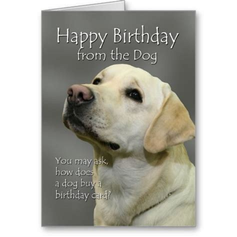 printable happy birthday cards from the dog happy birthday from the dog yellow labrador birthday