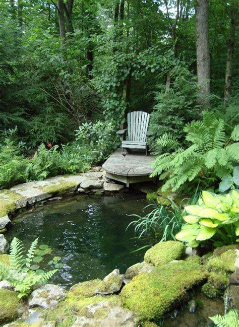 backyard pond plan