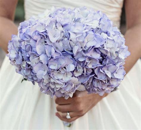 Buket Bunga Hydrangea 9 fakta arti dan makna bunga hydrangea kembang bokor