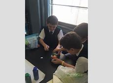 6th Grade Earth Layers 3D Model - St. Patrick's Catholic ... Zoom Video Communications