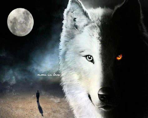 wolf wallpaper pinterest wolf fantasy pics wolf fantasy wallpaper 34175209