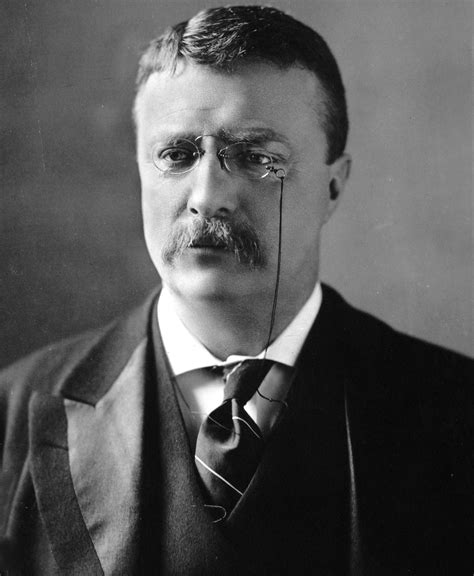 presidency of theodore roosevelt wikipedia the free file theodore roosevelt circa 1902 jpg wikimedia commons