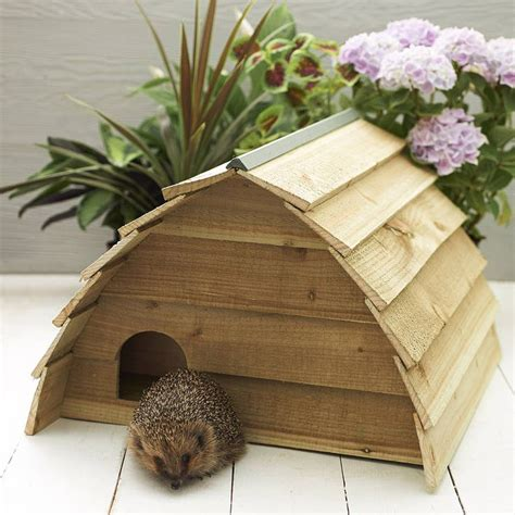 hedgehog houses to buy 25 best ideas about hedgehog house on pinterest