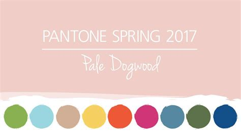 2017 spring color pantone spring colors 2017 pale dogwood hm etc