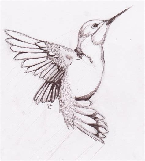 pattern drawing bird best 25 bird drawings ideas on pinterest