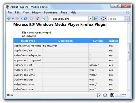 format video player installing windows media player plugin for firefox