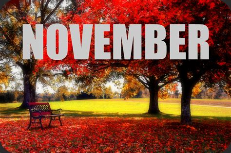 must read faster november goals and happenings