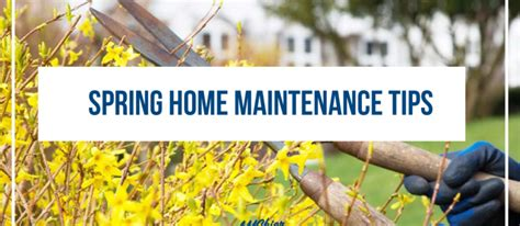 spring home tips spring home maintenance tips amskier insurance