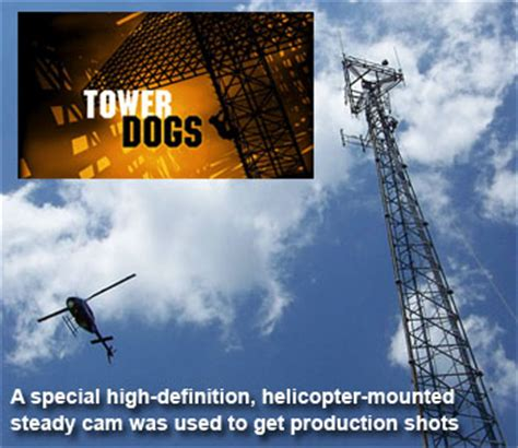 tower dogs tower dogs related keywords suggestions tower dogs keywords