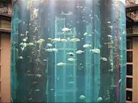 zoologischer garten berlin aquarium öffnungszeiten radisson aquarium zoologischer garten berlin zoo