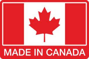Backyard Ice Hockey Rinks Flexible Hockey Goal Pegs And Steel Inserts Canada And Usa