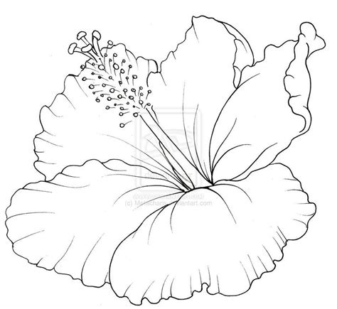 hawaii flower coloring page hawaii coloring pages to print hibiscus coloring pages