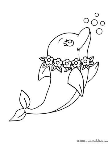 lovely dolphin coloring pages hellokids com
