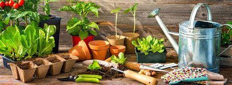 orto in cassetta come fare un orto in cassetta trovami