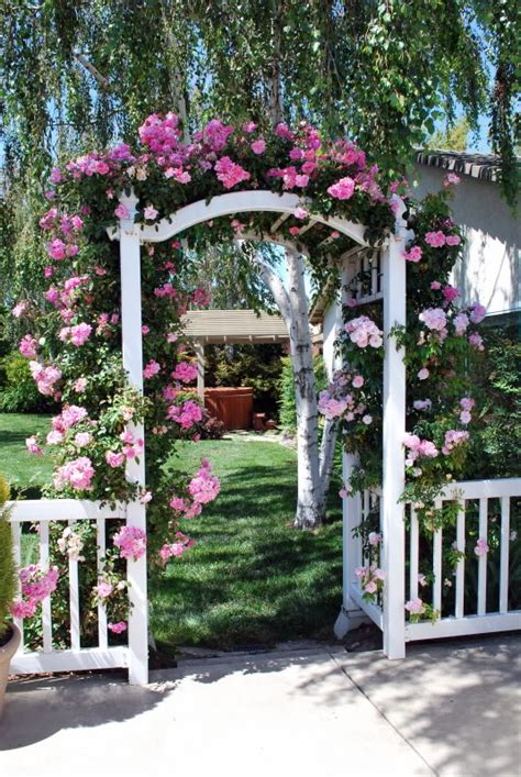 mesmerizing garden arches covered  flowers