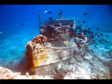 tugboat bay dive curacao tugboat pier and directors bay youtube