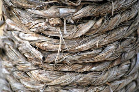 free photo rope twine hemp sisal string free image on pixabay 19446