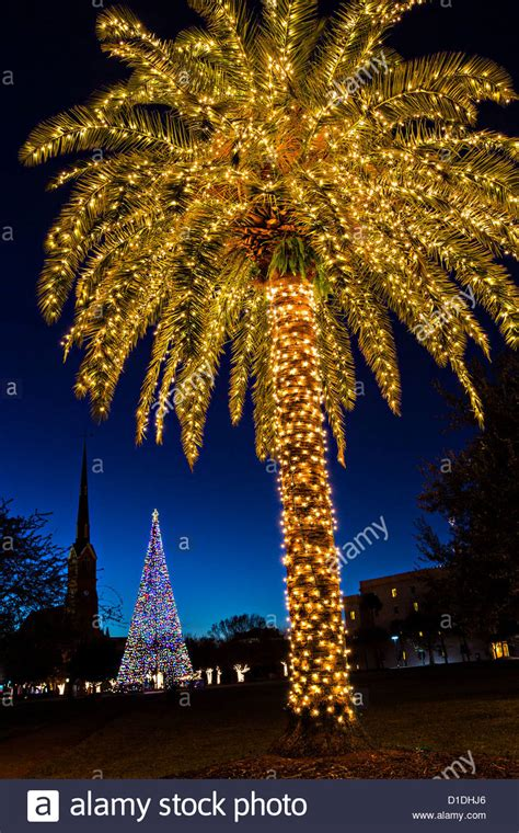 houses with christmas tree lites in palm springs palm tree covered in lights for in historic marion stock photo royalty free