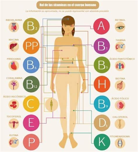 proteinas e vitaminas vitaminas todo sobre ellas a b c d e k h
