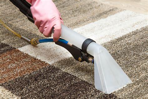 sofa cleaning shoo bildquelle 169 fotoduets shutterstock com