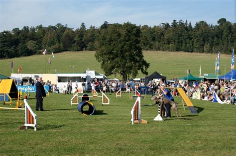 how to a for agility competition agility competition at loseley park 169 simon mortimer cc by sa 2 0 geograph