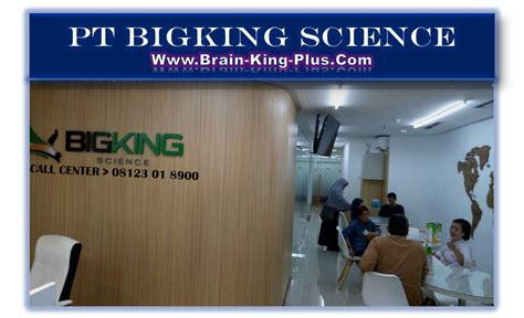 Brainking Plus Indonesia pt bigking science gt gt brainking plus nutrition
