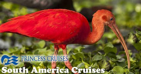 princess cruises south america princess cruises to south america south american