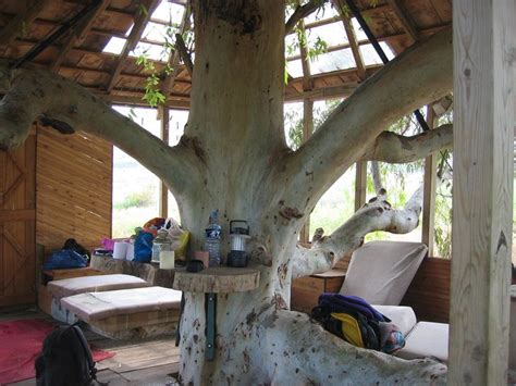 tree house interior tree house interior cool breeze pinterest