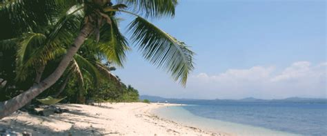 beach cottage ls explore the apo reef pandan island for 3 days 2 nights