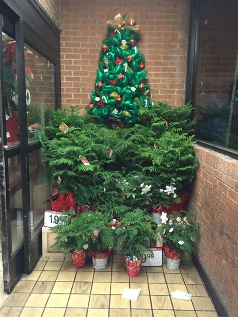 december 10 2015 christmas tree display kroger old