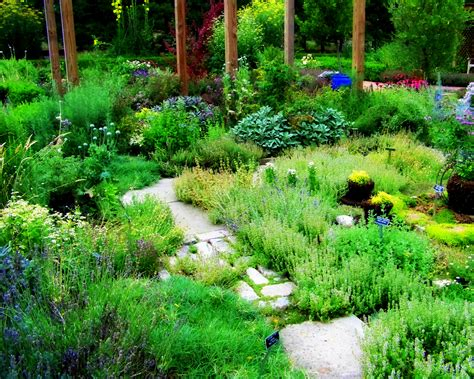 Garden Of Herbals Herb Garden Iii By Madgardens On Deviantart