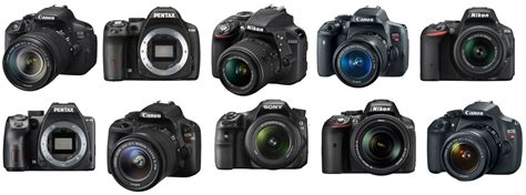 best dslr for beginners the top 10 best dslr cameras for beginners the wire realm
