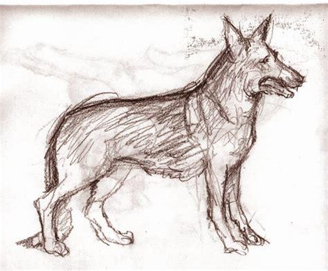 imagenes a lapiz de perritos perros pitbull para dibujar a lapiz imagui