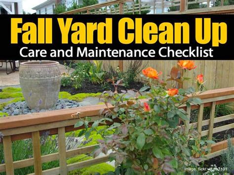 backyard cleanup fall yard clean up care and maintenance checklist