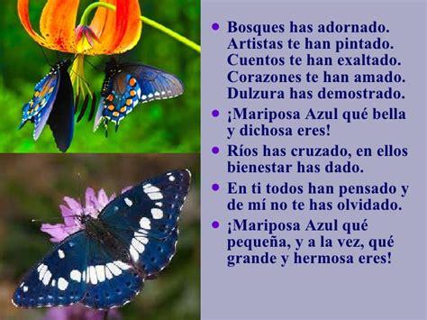 poemas sobre la naturaleza cortos poes 237 a de la naturaleza quot la mariposa azul quot