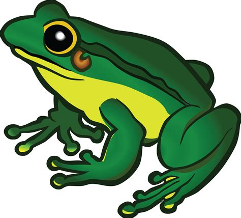 frog clipart free clipart of a frog