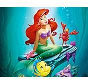 Little Mermaid Cartoon Wallpapers  WallpapersIn4knet