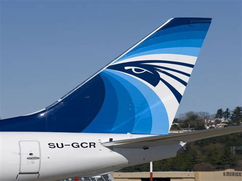 egyptair cargo targets growth with new freighters air cargo news