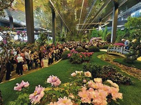 mercato dei fiori genova euroflora 2017 cos 236 genova cambier 224 l expo dei fiori