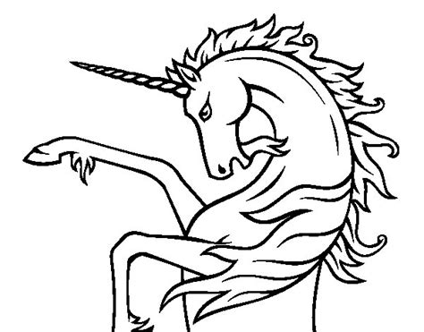 imagenes de unicornios infantiles para colorear dibujo de unicornio salvaje para colorear dibujos net
