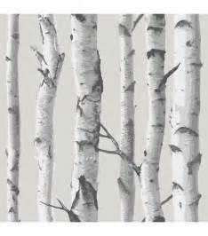 stick on wall paper top 25 best birch tree wallpaper ideas on