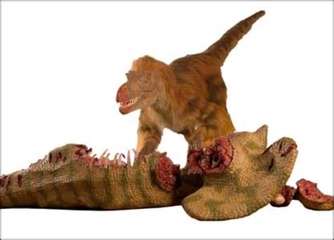 what does velociraptor eat it cbbc newsround pictures in pictures new dino exhibition