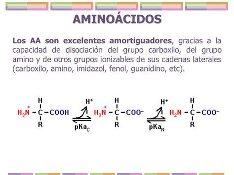 cadena lateral de aminoácidos amino 193 cidos q b p karla e d 237 az tamez ppt descargar