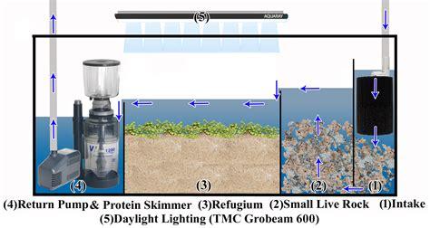 membuat sump filter aquarium basic saltwater aquarium set up marine tank diagrams