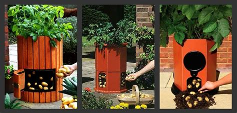 Gardeners Supply Barrel 91 Best Images About Jersey Fresh Produce On