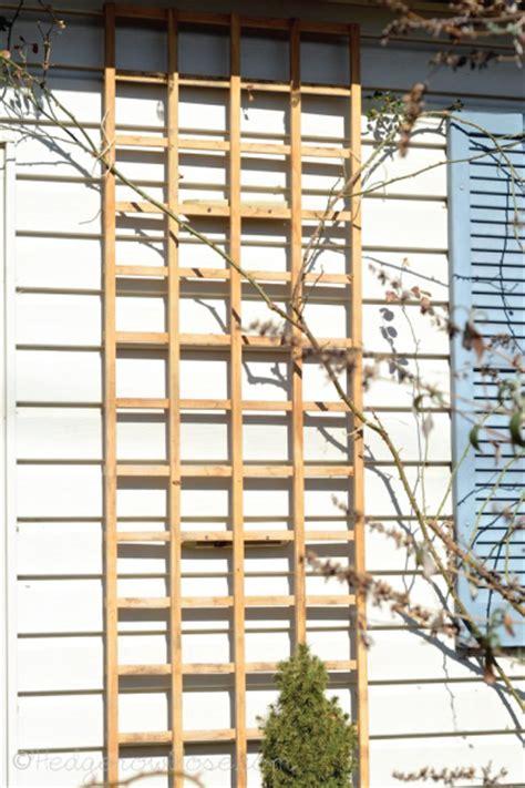 House Trellis installing a trellis for climbing roses onto your house